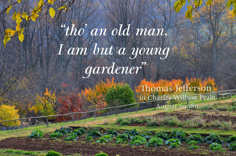 """old man, young gardener"""