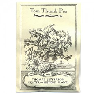 tom-thumb-pea-7[1]